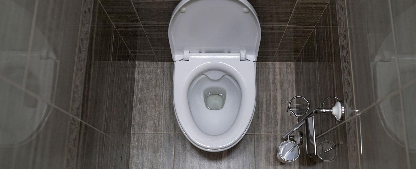 Toilet Mobile